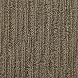 carpet_flooring_perth_earthy_tone_baloghia_snow_gum