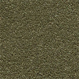 carpet_flooring_perth_earthy_tone_brittlewood_afterglow