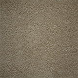 carpet_flooring_perth_earthy_tone_brittlewood_chinabeige