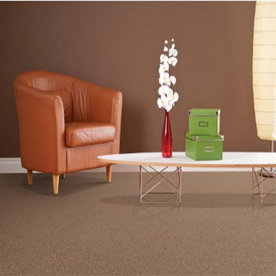 carpet-flooring-perth-cuttsia_soft_birch
