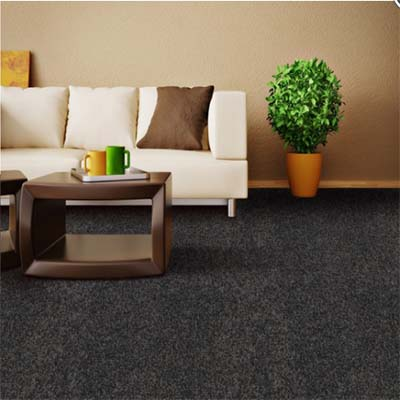 carpet_flooring_perth_winston_soft_e