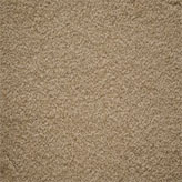 Carpet Flooring Perth Cassia Tree Camel