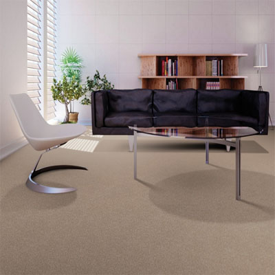 Carpet Flooring Perth Cassia Tree Sample Design