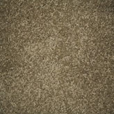Carpet Flooring Perth Euodia Tree Riversand