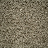 Carpet Flooring Perth Hickory Tree Bramble