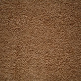 Carpet Flooring Perth Hickory Tree Hacienda