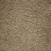 Carpet Flooring Perth Hickory Tree Rawhide