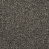 Carpet Flooring Perth Hughson II Tross