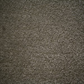 Carpet flooring Perth Indigo Tree Crocodile