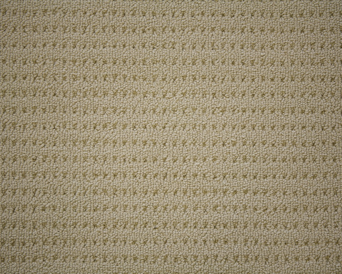carpet_flooring_perth_earthy_tone_baloghia_barrington_rice_paper