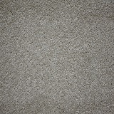 carpet_flooring_perth_brittle_wood_forest_mist