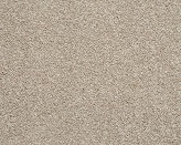 Colwood II Montrose Carpet Flooring Perth