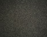 Gladstone Camlet Carpet Flooring Perth