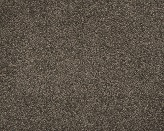 Hughson II Phantom Carpet Flooring Perth