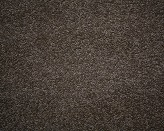Mapleton Falls Desert Brown Carpet Flooring Perth