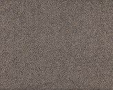 Rosella Decaf Carpet Flooring Perth