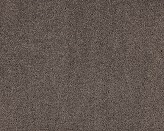 Rosella Fox Brown Carpet Flooring Perth